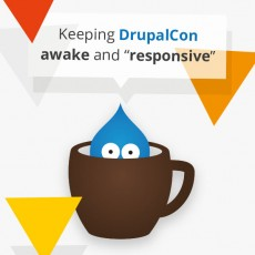 Keeping DrupalCon Awake and Responsive