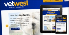 Vets Alliance Responsive Web Design